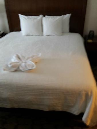 Hilton Garden Inn Valley Forge/Oaks : firm bed with cute pillow