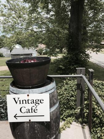 Vintage Cafe at South Shore Wine Company: Fresh made salads and sandwiches. Very nice setting on giant screened in porch overlooking the v