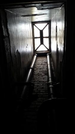 The Harlem Flophouse: looking up from the bathroom