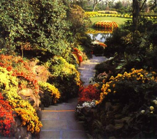 A 65 Acre Winter Wonderland Magic Christmas In Lights Picture Of Bellingrath Gardens And