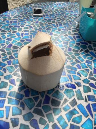Sunfrost Farm: Breakfast burrito and Thai coconut