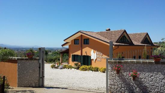 Villa Molinari B&B