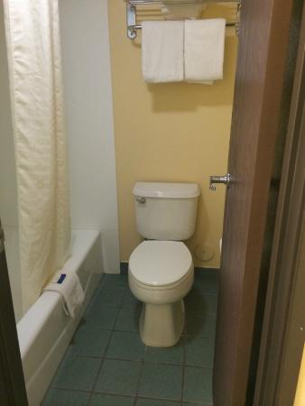 Budget Inn: Toilet