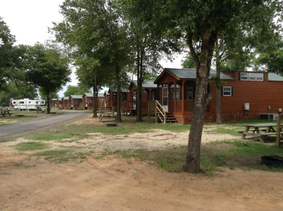 Cabins picture of lone star jellystone park waller for Fishing cabins in texas