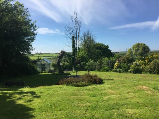 Treglown House: Garden