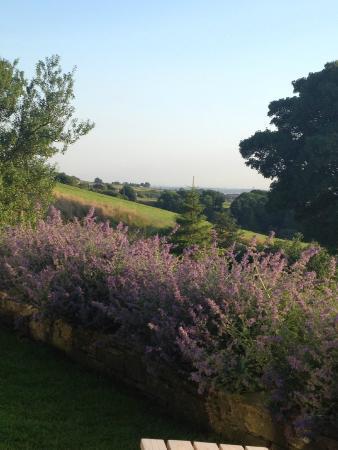 Quarlton Fold Farm : Gorgeous view of the heather