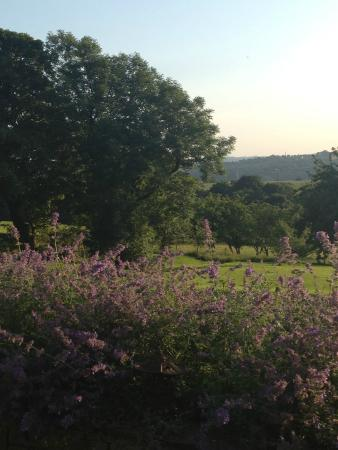 Quarlton Fold Farm : Lovely!