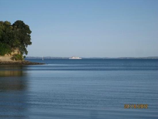 Clear View : Matakatia Bay
