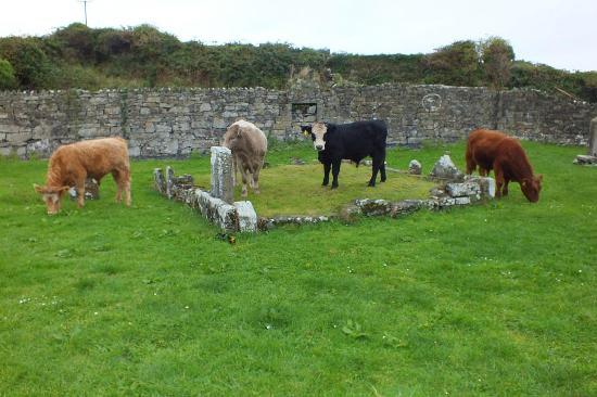 Aer Arann Islands