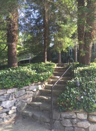 Highland Lake Inn & Resort Hendersonville: Looking up at the Lodge