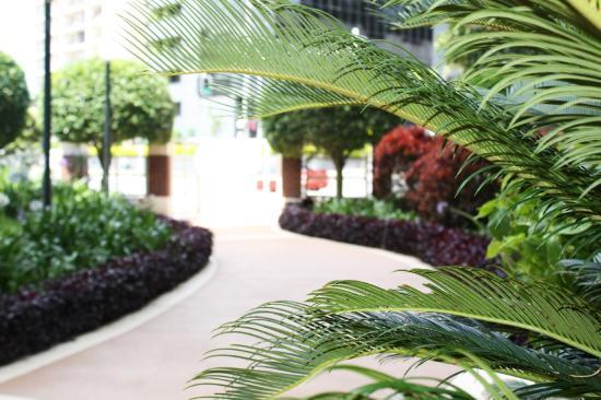 Waterways Luxury Apartments : Tranquil Gardens