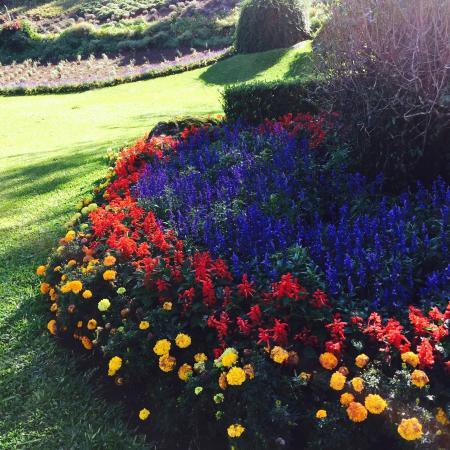 Jardim picture of le jardin parque de lavanda gramado for Jardines de lavanda