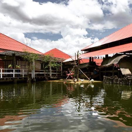 Thipurai City Hotel : Floating market