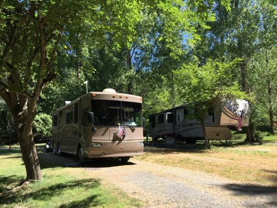 Willits camping