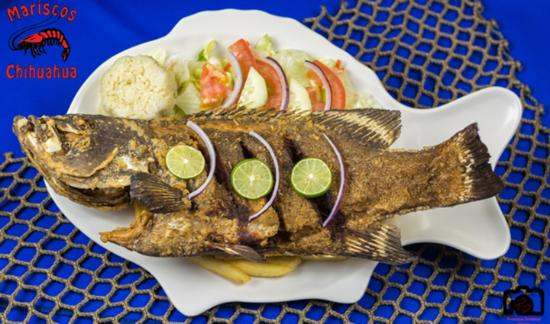 Nogales, AZ: Nothing like a pescado al disco to leave your taste buds and stomach satisfied!
