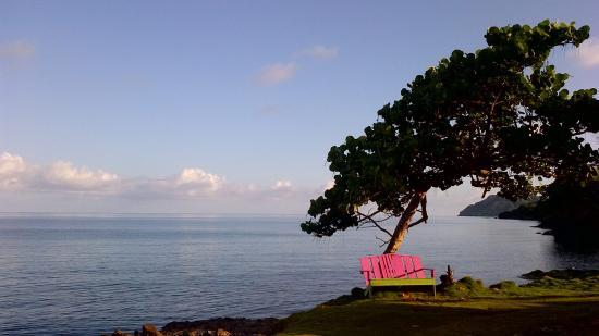 Posada Ocean View