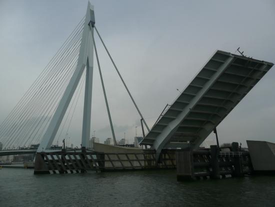 Fun to watch - Picture of Erasmus Bridge, Rotterdam ...