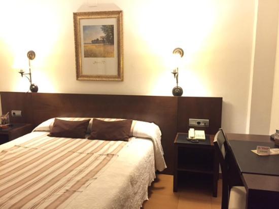 Hotel del Carmen: room