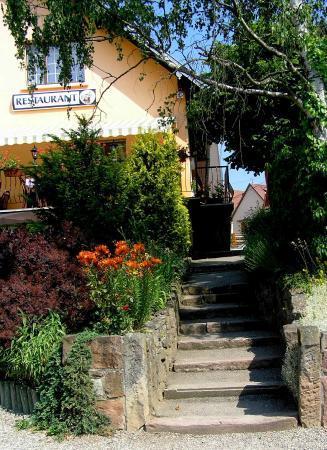 A l'Arbre Vert Hotel-Restaurant : Bienvenue