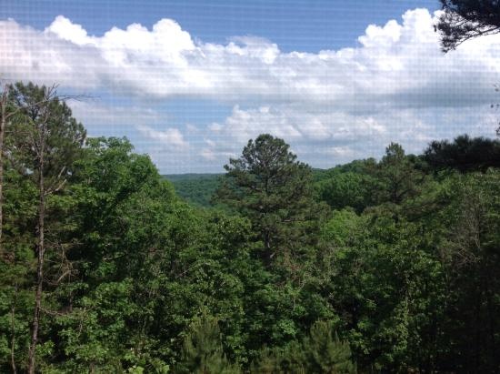 Bear Mountain Log Cabins: View out the back deck