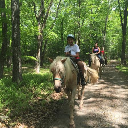 Mountain Creek Riding Stables : First time on a horse and it was a great experience!