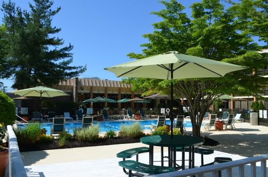Outdoor seating area with pool view picture of holiday inn westbury carle place tripadvisor for Springhill suites carle place garden city