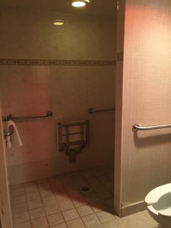 BEST WESTERN Mill River Manor: shower