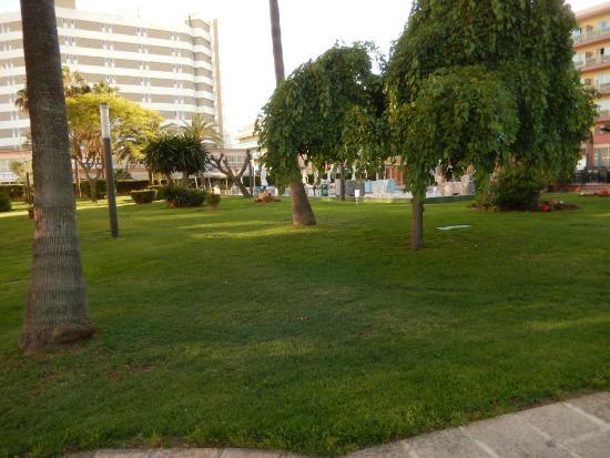 Hotel Helios: une partie du parc
