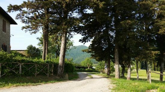 I Nidi di Belforte : One of the walking paths