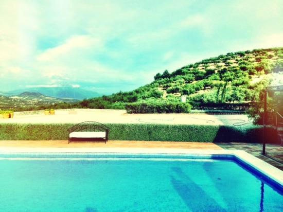 Cortijo Piltraque: The pool surrounded by the mountains and olive trees
