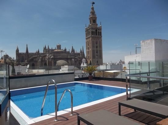 Roof Top Pool Picture Of Hotel Casa 1800 Sevilla Seville Tripadvisor