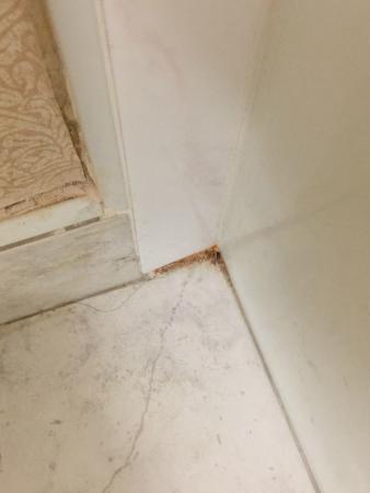 Wyndham Visalia: Bathroom Floor