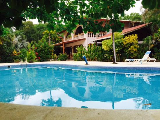 Hotel Casa Romantica: Great pool and the water is warm!