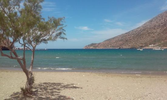 Morfeas Pension: the beach in front of the hotel