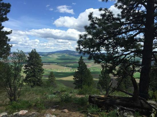 Kamiak Butte County Park: View from the top