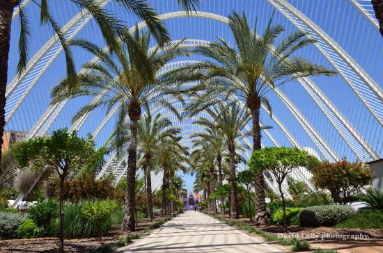 The l'umbracle is an indoor garden covered by a tubular arch