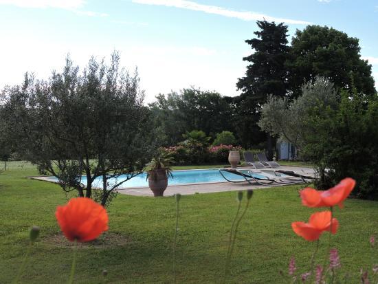 Le Mas du Grand Luberon : Vue sur la piscine