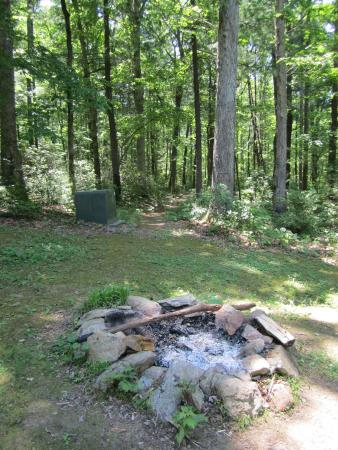 Dyke, VA: Fire pit and a trail leading to the pool