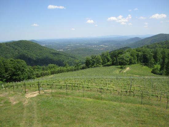 Dyke, VA: Nearby Stone Mountain Vineyards)