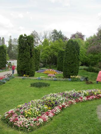 Botanical Garden: Near the entrance