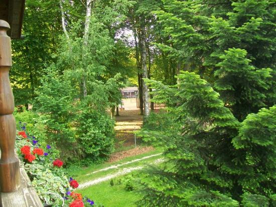 Waging am See, Deutschland: Blick zum Tennisplatz