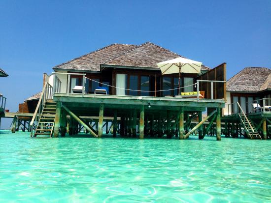 Water villa view from the ocean - Picture of Vakarufalhi Island Resort, Vakarufalhi Island ...