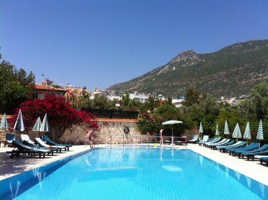 Meldi Hotel: The pool