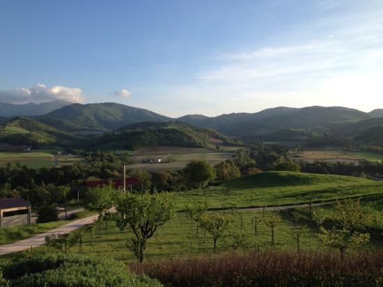 La Rosa Tea: Uitzicht vanuit de kamer