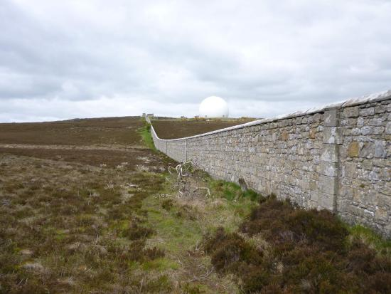 Hulne Park: Part of the estate walls near Brizlee Hill.