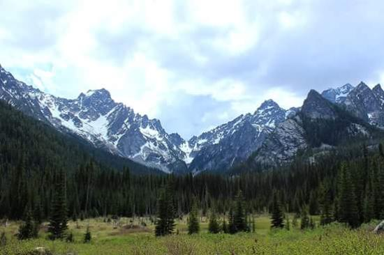 Wenatchee National Forest: An open meadow before you reach the lake