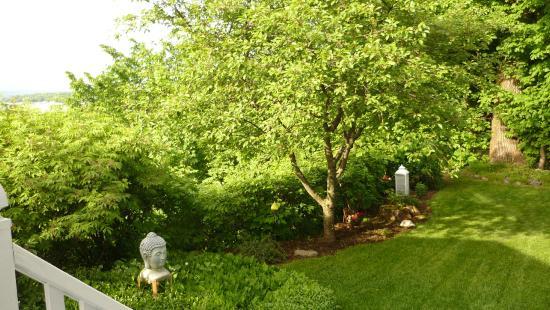 Au Manoir de Levis - Gite le Rosier: un petit coin jardin