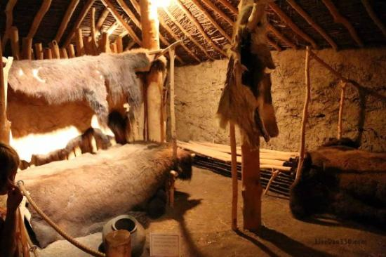 Mitchell Prehistoric Indian Village: The museum