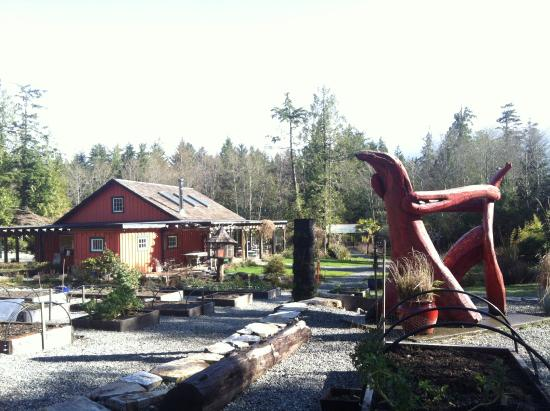 The Ecolodge at the Tofino Botanical Gardens: the gardens