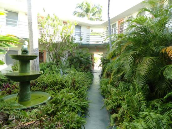 grounds rooms picture of el patio motel key west tripadvisor